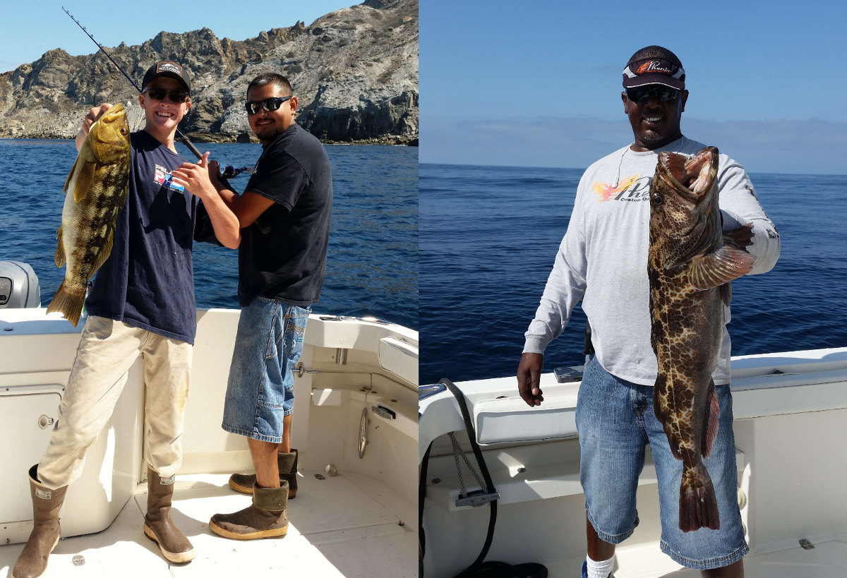 Calico Bass and Lingcod caught with LA Sportfishing